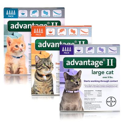 Advantage II for Cats & Kittens